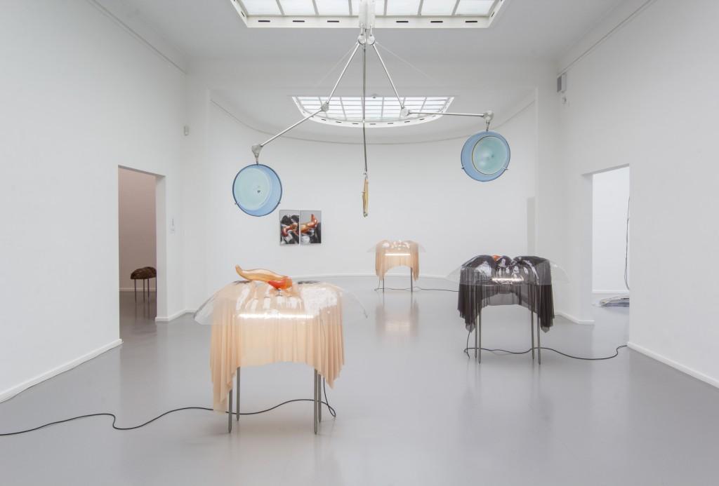 Foto des Ausstellungsraum mit Exponaten