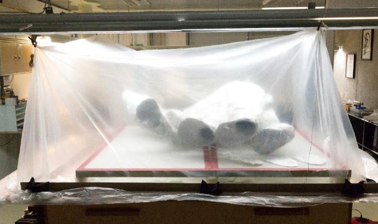 Eisbär im Klimazelt während der Restaurierung